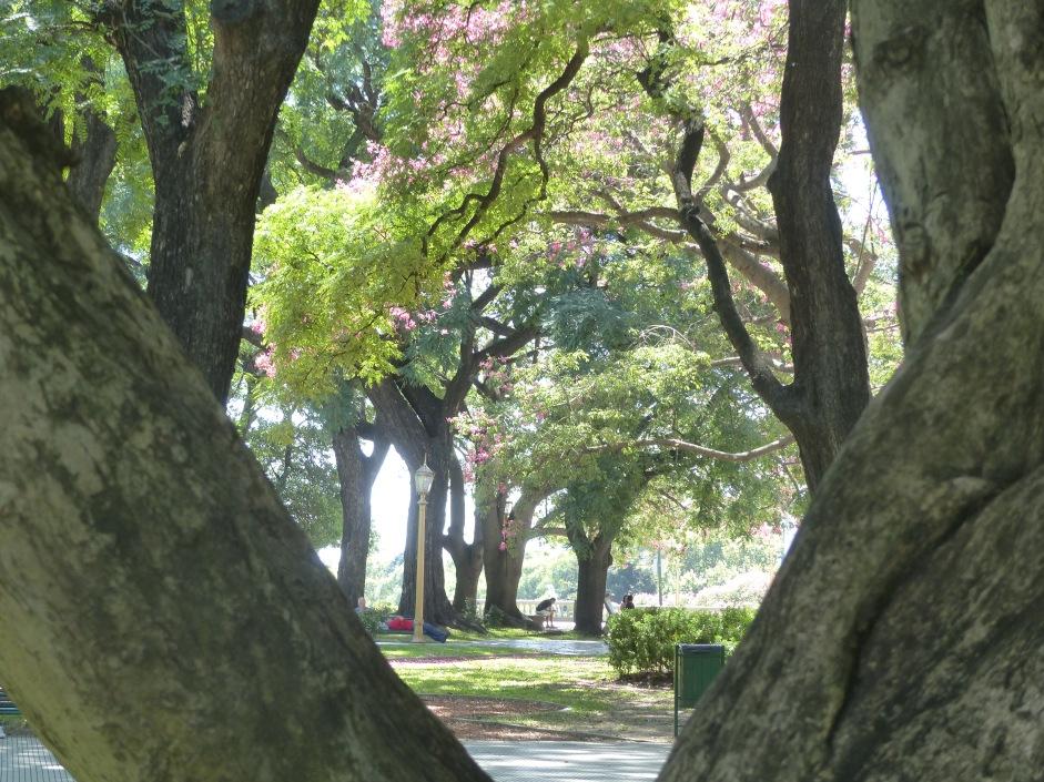 Beautiful parks.