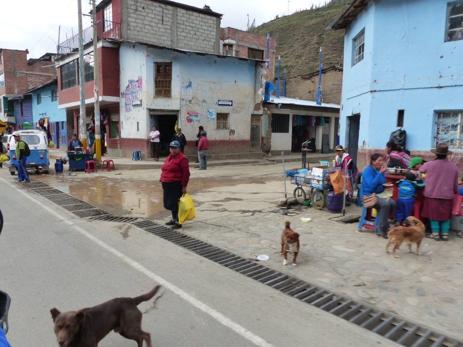 Dogs of Peru.....aways chasing us....