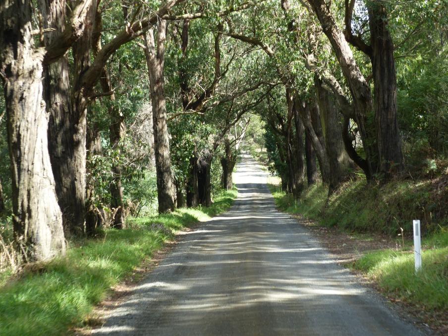 Charming roadways.